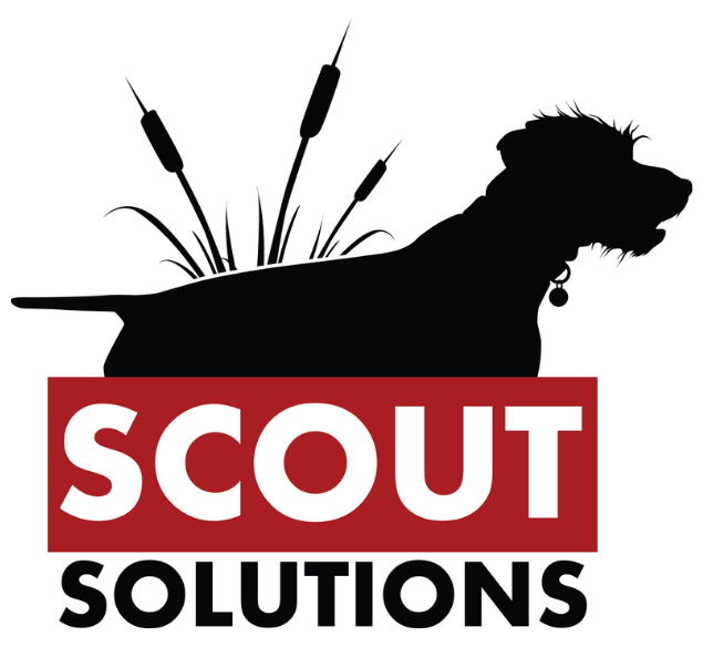 Scout Solutions Logo